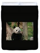 Adorable Giant Panda Eating A Shoot Of Bamboo Duvet Cover