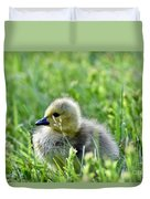 Adorable Goose Chick Duvet Cover