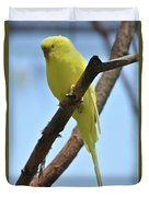 Adorable Little Yellow Parakeet In A Tree Duvet Cover