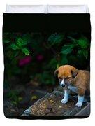 Adorable Duvet Cover