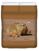 Adorable Pair Of Chubby Black Tailed Prairie Dogs Duvet Cover