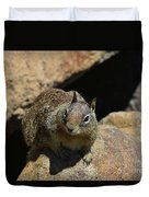 Adorable Up Close Look Into The Face Of A Squirrel Duvet Cover
