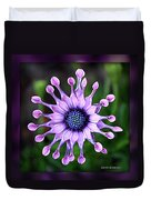 African Daisy - Hdr Duvet Cover