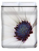 African Daisy  Sky And Ice Duvet Cover