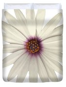 African Daisy With White Petals Duvet Cover