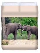 African Elephants Interacting Duvet Cover