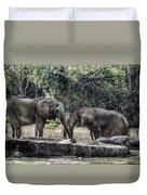 African Elephants_hdr Duvet Cover