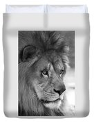 African Lion #8 Black And White Duvet Cover