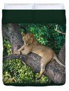 African Lion Panthera Leo On Tree, Lake Duvet Cover