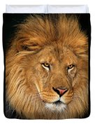 African Lion Panthera Leo Wildlife Rescue Duvet Cover