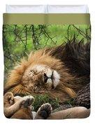 African Lion Sleeping In Serengeti Duvet Cover