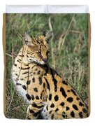 African Serval In Ngorongoro Conservation Area Duvet Cover
