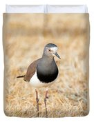 African Wattled Lapwing Vanellus Duvet Cover