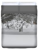 After The Blizzard Duvet Cover