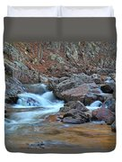 After The Rains On Pickle Creek 1 Duvet Cover