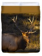 After The Rut Duvet Cover by Barbara Schultheis