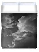 After The Storm In Black And White Duvet Cover