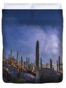 Afternoon Desert Scene Duvet Cover