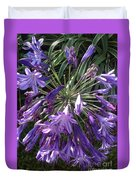 Agapanthus Flowers In Purple - New And Old Duvet Cover
