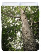 Agathis Borneensis Tree Duvet Cover