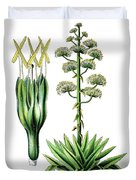 Agave Americana, Common Names Century Plant, Maguey Or American  Duvet Cover