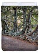 Ageless Norfolk Duvet Cover