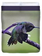 Aggressive Behavior - Ruby-throated Hummingbird Duvet Cover