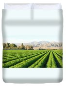 Agriculture In The Desert Duvet Cover