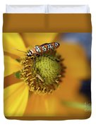 Ailanthus Webworm Moth #5 Duvet Cover