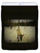 Alaskan Morning Duvet Cover