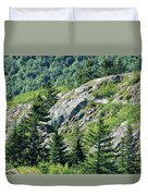 Alaskan Wilderness Duvet Cover
