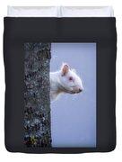 Albino Squirrel Duvet Cover