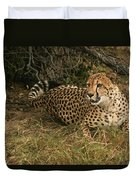 Alert Cheetah Duvet Cover