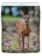 Alert Fawn Deer In Shiloh National Military Park Tennessee Duvet Cover