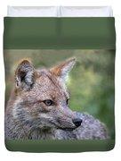 Alert Fox  Duvet Cover