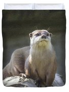 Alert Otter Amblonyx Cinerea Duvet Cover
