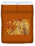 Alfred Caldwell Lily Pool Springs 2 Duvet Cover