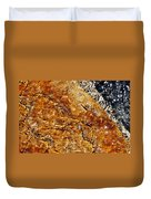 Alfred Caldwell Lily Pool Springs Duvet Cover