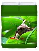 Alien Moth Duvet Cover