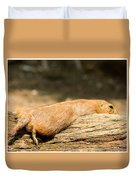 All Stretched Out Duvet Cover