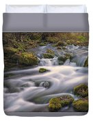 Alley Spring Rapids Fall Mo Dsc09212 Duvet Cover
