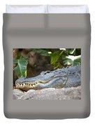 Alligator 1 Duvet Cover