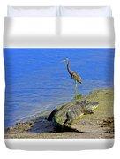 Alligator And Blue Heron Duvet Cover