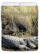 Alligator  Duvet Cover