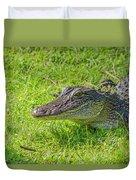 Alligator Up Close  Duvet Cover by Allen Sheffield