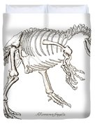 Allosaurus Skeleton Duvet Cover