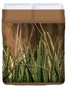 Aloe 3 Duvet Cover
