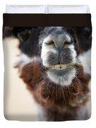 Alpaca #1 Duvet Cover by Rebecca Cozart