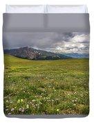 Alpine Meadow Before Mount Guyot Duvet Cover