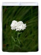 Alpine Yarrow Wildflower 1 Duvet Cover